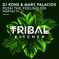 Dj Kone & Marc Palacios - Push The Feeling On (Block & Crown Rmx)