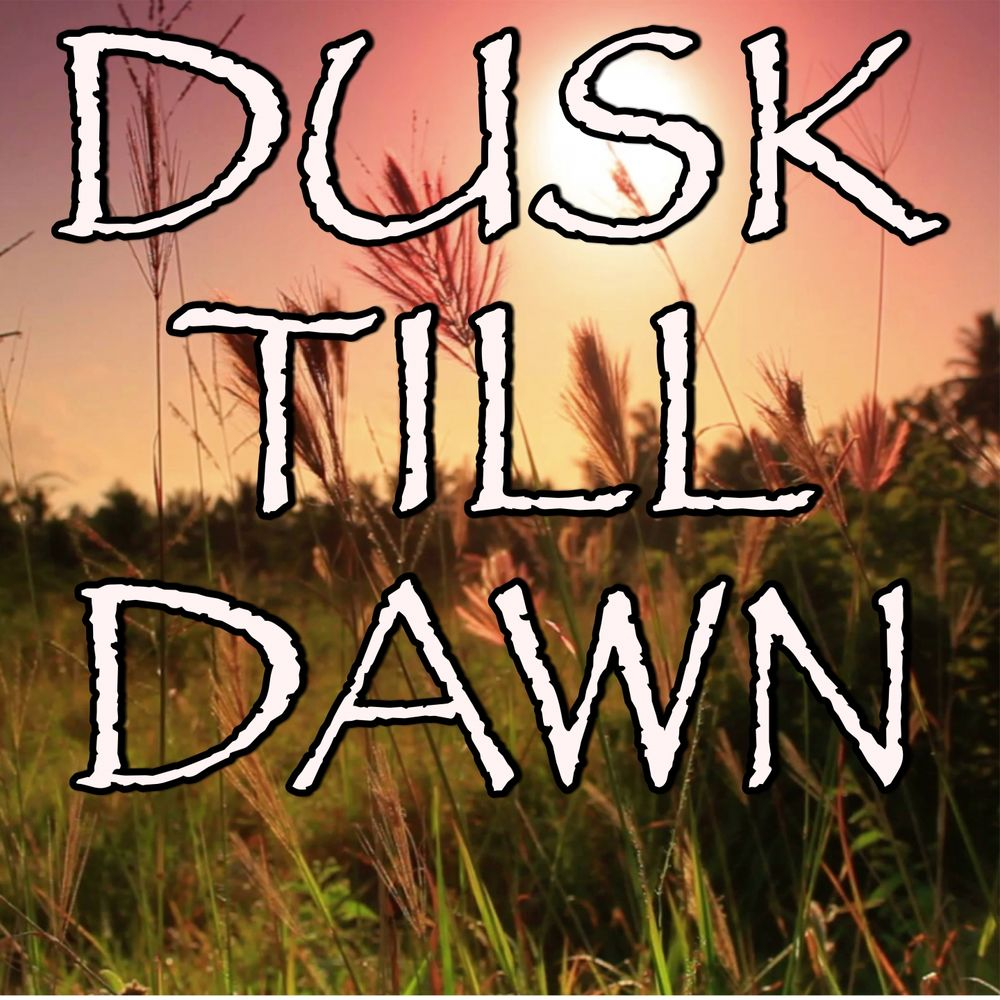 Dusk Till Dawn - Tribute to Zayn and Sia