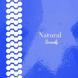 Album cover of # 1 Album: Natural Sounds