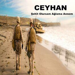 Album cover of Şehit Olursam Ağlama Annem