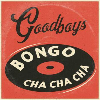 Bongo Cha Cha Cha cover