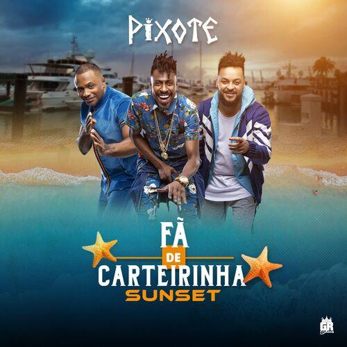 BAIXAR NOVO DO CD PIXOTE 2011