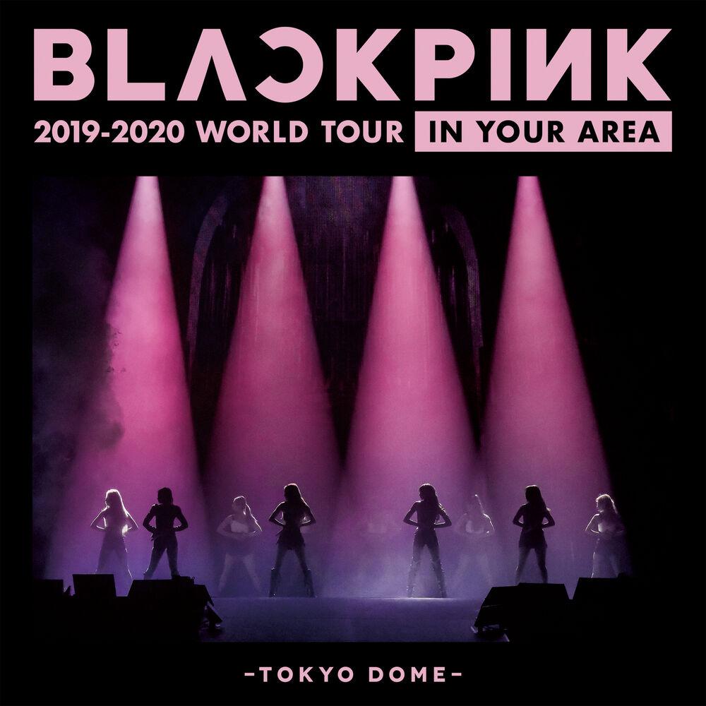 DDU-DU DDU-DU (Japan Version / BLACKPINK 2019-2020 WORLD TOUR IN YOUR AREA -TOKYO DOME-)