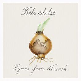Album cover of Bekendelse