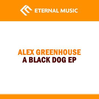 A Black Dog cover