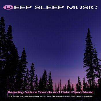 Music For Sleep cover