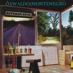 A Festa (Pra Quem Quer Se Alegrar) – Oswaldo Montenegro