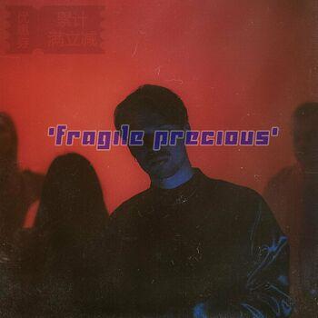 Fragile Precious cover