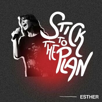 Stick to the Plan cover