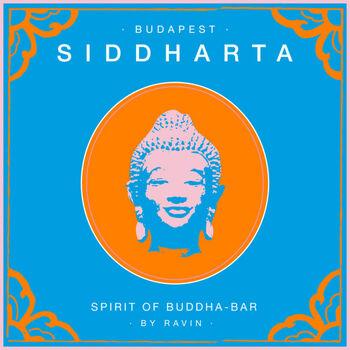 The Indian (Original Mix) cover