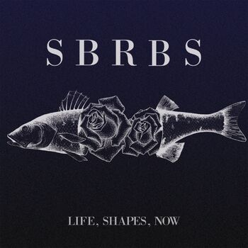 Life, Shapes, Now cover