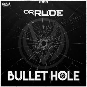 Bullet Hole cover