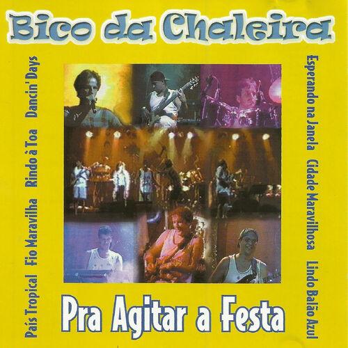 Baixar CD Pra Agitar a Festa – Bico da Chaleira (2002) Grátis