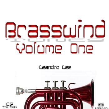 Brasswind cover