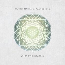 Album cover of Wandering