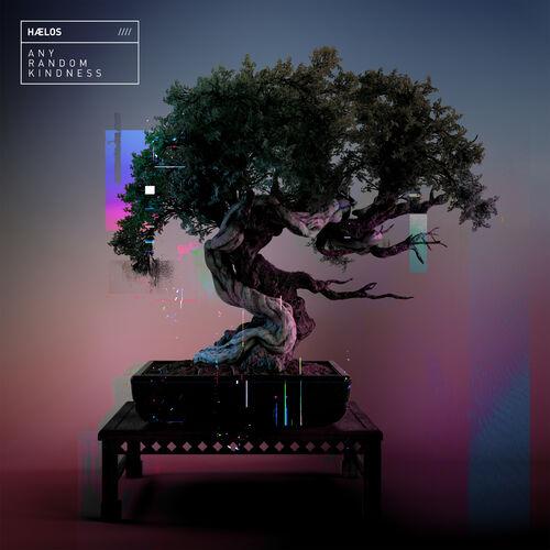 Hælos - Any Random Kindness 2019 [LP]
