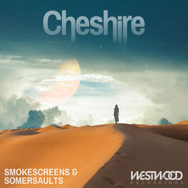 Album cover of Smokescreens & Somersaults