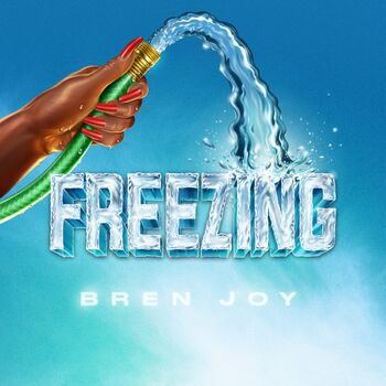 Freezing cover