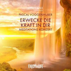 Erwecke die Kraft in Dir (Live Meditations-Konzert) Audiobook