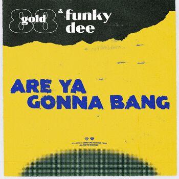 Are Ya Gonna Bang cover