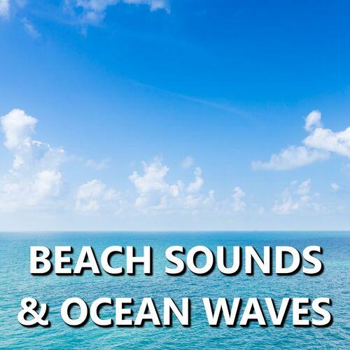 Ocean Sounds: Beach Sounds & Ocean Waves - Musikstreaming