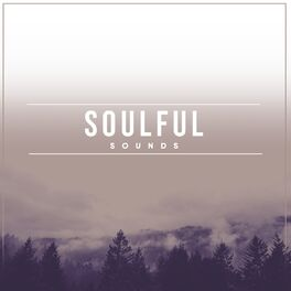 Album cover of Soulful Sounds