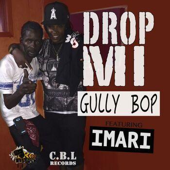 Drop Mi (feat. Imari) cover