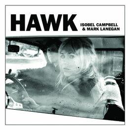 Album cover of Hawk