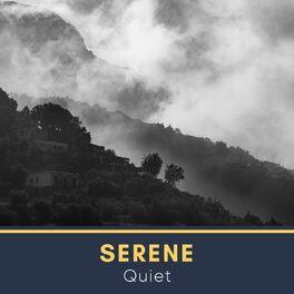 Album cover of 2020 Serene Quiet