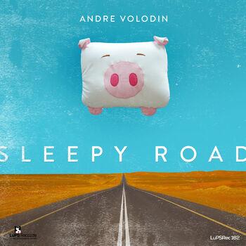 Sleepy Road (Original Mix) cover