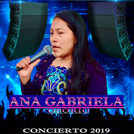 Album cover of Concierto 2019 (En Vivo)
