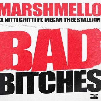 Bad Bitches (feat. Megan Thee Stallion) cover