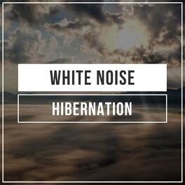 Album cover of # White Noise Hibernation