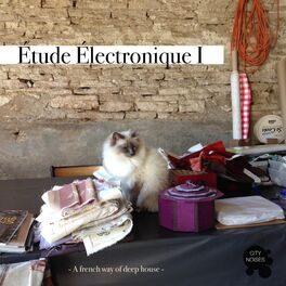 Album cover of Étude Électronique I - A French Way of Deep House