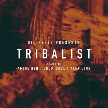 Tribalist (feat. Amine Ben, Drum Soul & Alex Lyng) cover