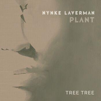 TREE TREE cover