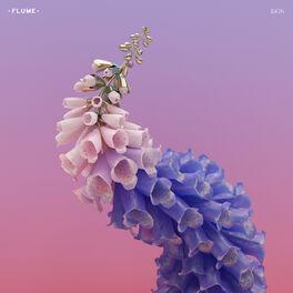 Album cover of Skin