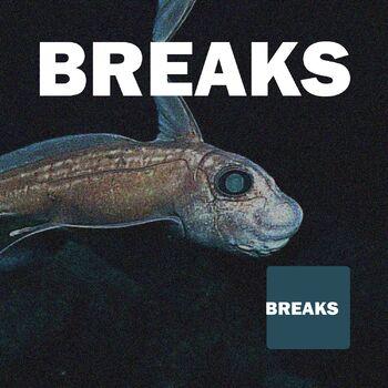 The Same Dream cover