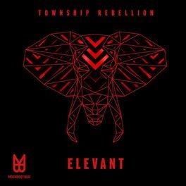 Album cover of Elevant