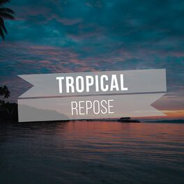 Album cover of # 1 Album: Tropical Repose