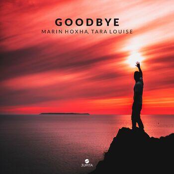 Goodbye cover