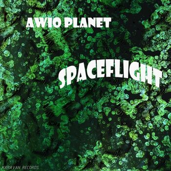 Spaceflight cover