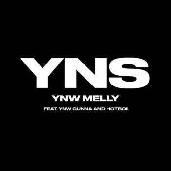 Yung Nigga Shit (feat. YNW Gunna & Hotboii) cover