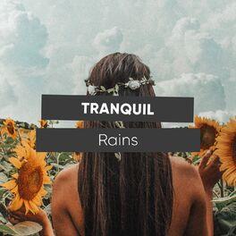 Album cover of # 1 Album: Tranquil Rains