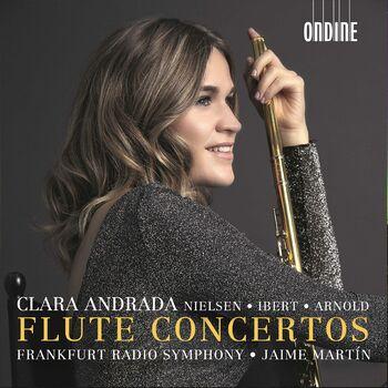 Flute Concerto: III. Allegro scherzando cover