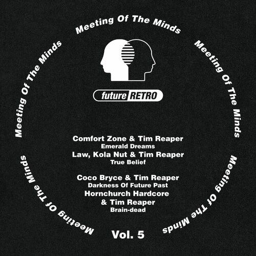 Download VA - Meeting Of The Minds Vol. 5 mp3