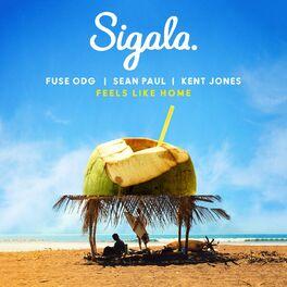 Album cover of Feels Like Home