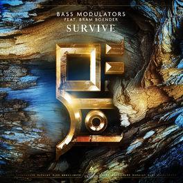 Album cover of Survive (feat. Bram Boender)