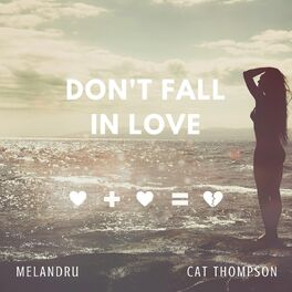 Album cover of Don't Fall in Love