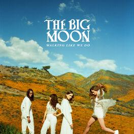 Album cover of Walking Like We Do